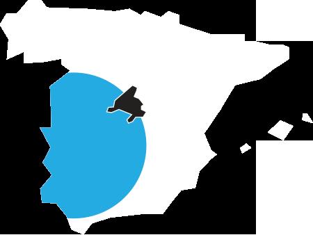 ¿Dónde es más probable encontrar radón en España?